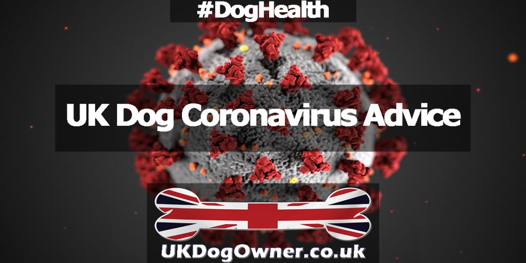 UK Dog Coronavirus Advice