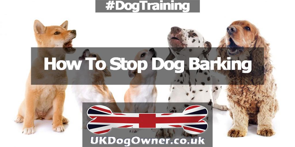 stop dog barking header