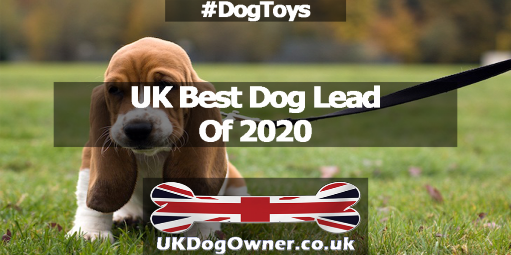 UK best dog lead of 2020